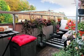 winterharte pflanzen balkon winterharte balkonpflanzen pflanzarten und pflege tipps