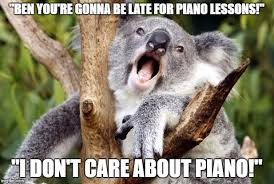 Koala Meme Generator - koala meme imgflip