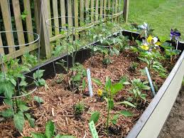 Mulching Vegetable Garden by Growing The Garden Loving Here