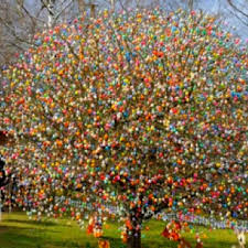 easter egg tree easter egg trees in germany happy easter 2017