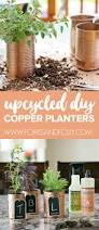 herb planter diy diy copper herb planters for your kitchen forks and folly