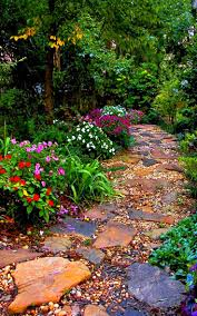 Backyard Ground Cover Ideas by Colorful Garden Path W Variations Of Rocks U0026 Plants Landscape