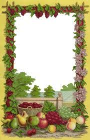 Free Decorative Borders Clip Art Free Fruit Border Clip Art Clipground