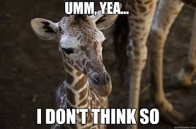 Ummm No Meme - umm yea i don t think so condescending giraffe quickmeme