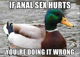 Anal Sex Meme - if anal sex hurts you re doing it wrong actual advice mallard 1