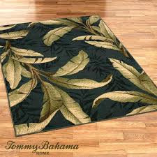 Area Rugs Tropical Tropical Area Rugs 8 Tropical Area Rugs Cheap Thelittlelittle