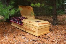 casket company pine box philosophy waters casket co
