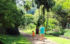 Garden Botanical Tours National Tropical Botanical Garden