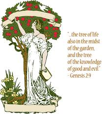 the tree of knowledge martin s pribble