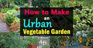 collection how to make a veggie garden photos free home designs