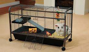 Rabbit Hutch Set Up Cages Pens U0026 Hutches For Rabbits Ware Living Room Series Rabbit Cage