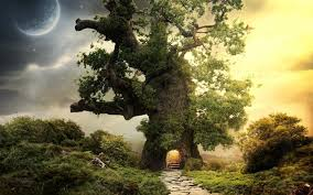 house tree 6965865