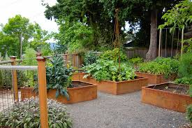 the exciting of potted vegetable garden diy by utilizing large