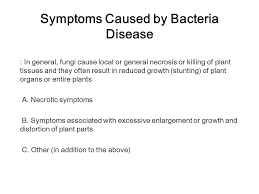 Plant Diseases Caused By Microorganisms - symptoms caused by bacteria disease ppt video online download