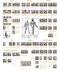 home gym exercise chart home fitness designing your own home gym