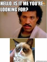 Lionel Richie Meme - hello is it me you re looking for no grumpy cat and lionel
