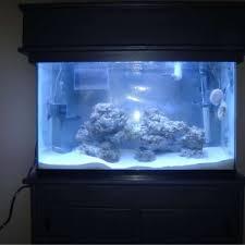 Live Rock Aquascaping Ideas What Makes A Great Aquascape Reef Sanctuary