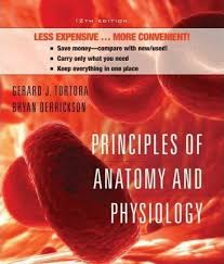 Anatomy And Physiology Place Principles Of Anatomy And Physiology With Atlas Gerard J