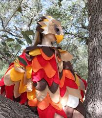 best 25 eagle costume ideas on pinterest feather fashion neck