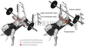close grip barbell bench press exercise instructions and video