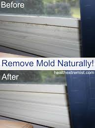 how to get rid of mold naturally 3 ways