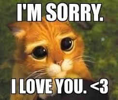 I Love U Meme - i m sorry i love you love meme golfian com