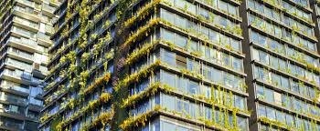 the world u0027s tallest vertical garden lives and breathes in sydney