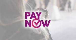 paynow now lets you transfer money to any local bank account with