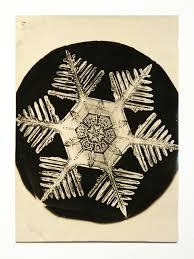 snowflake bentley book the photographer who discovered that no two snowflakes are alike