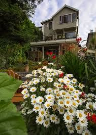 three story house landscapers are kings of the hill on queen anne the seattle times
