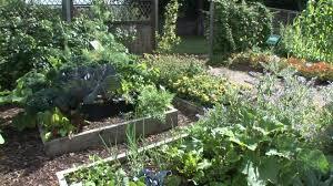 How To Start A Garden Bed Good Location How To Start A Veggie Garden 1123 Hostelgarden Net