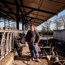 chambre d agriculture haute garonne la chambre d agriculture à la peine au malaise agricole