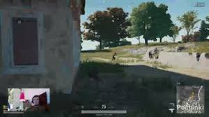 pubg lfg wifedogg videos twitch