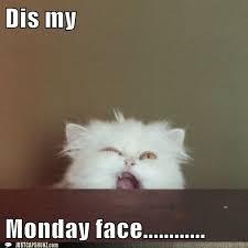Monday Funny Meme - 19 monday memes life quotes humor
