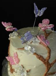 Butterfly Cake Decorations On Wire Plumeria Cake Studio Butterfly First Birthday Cake