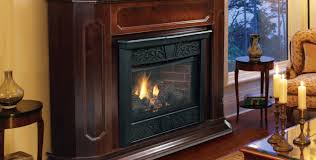 Free Home Design Shows Interior Design Free Standing Ventless Gas Fireplace Free Standing