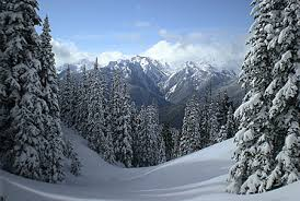 visiting in winter olympic national park u s national park