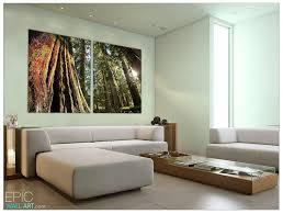 cedar forest giant