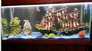 unique fish tanks aquarium dans le salon en plus de 103 ides