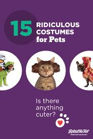 wholesale halloween costume promo codes 61 best halloween images on pinterest halloween decorations
