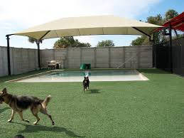 easyturf installation done at a pet care facility the dogs just