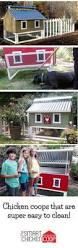 Best Chicken Coop Design Backyard Chickens by 48 Best Chicken Coops Images On Pinterest Backyard Chickens