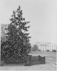 christmas tree fasab