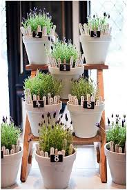 best 25 potted plant centerpieces ideas on pinterest herb