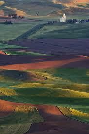 Washington landscapes images Rural landscape at sunset steptoe butte palouse washington usa jpg