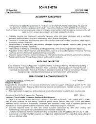 sales executive resume account sales executive resume accounts executive resume sle