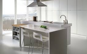 Merillat Kitchen Cabinets by How Long Will Painted Kitchen Cabinets Last U2013 Marryhouse Kitchen