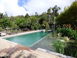 Natural Pools by Projects Archive Natural Pools Nz