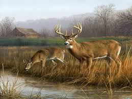 25 unique hunting backgrounds ideas on pinterest deer hunting