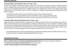 Auditor Sample Resume by It Auditor Resume Sample Reentrycorps